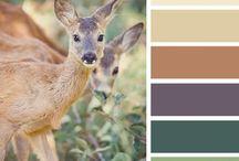 Kleuren inspiratie / Kijk hier voor inspiratie!