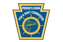 Pennsylvania flyfishing / Conserving Pennsylvania streams for fly fishing.
