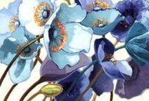 Illustrations - flowers