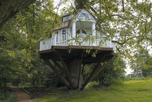 Treehouses / Always a kid at heart. Houses in the sky, oh how wonderful! I will take of of each.  / by C P