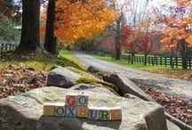 """Fall In Foxburg Photo Contest / Photo entries received from participants for our """"Fall In Foxburg"""" photo contest held in Oct 2013. For more details, visit our blog at http://gofoxburg.com/?p=33540 #FallInPA #PhotoContest"""