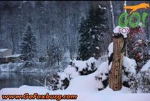 Foxburg Winter Wonderland / Scenes from snow clad Foxburg during the holiday season!