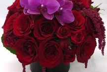 Rich red, burgundy and White Wedding Flowers / Bridal Bouquets and Centerpiece arrangements in Reds, Burgundy, whites to include roses, dahlias, hypericum, ranunculus, tulips and other exquisite flowers Designed for you by Edelweiss Flower Boutique