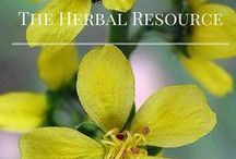 Medicinal Herbs / Information on #medicinalherbs, Health Benefits, side effects, therapeutic properties and Uses.