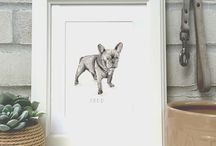 Hand Drawn Pet Illustrations