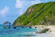 Petit St. Vincent Media Coverage / Check out what the media has to say about Petit St. Vincent.