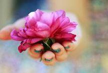 Kvety / Kvety, kvietiny, kvetinky. V kvetináči, na strome, rezané, vo váze,...