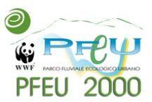 """PFEU-2000 / UE DG X/XI – CIUL Terni; COMUNE DI TERNI;  WWF Italia P.F.E.U. - """"Progetto per la risistemazione e riqualificazione delle sponde del fiume Nera, primo stralcio operativo - Il Giardino Didattico del Fiume Nera"""".   Progetto preliminare, definitivo ed esecutivo; DL. (Settembre 2000)"""