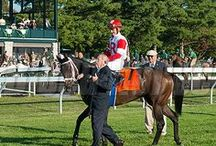Keeneland Fall 2013 / Images from the Fall 2013 Meet at Keeneland