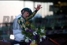 Breeders' Cup 2013 / by The Blood-Horse