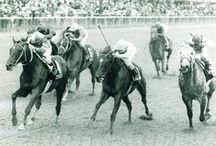 Throwback Thursday / Classic Horse Racing photos presented each Thursday. / by Blood-Horse