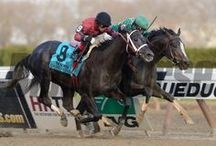 Kentucky Derby / by Blood-Horse