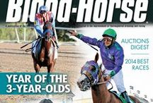 2014 Covers / The 2014 Covers of The Blood-Horse magazine. / by Blood-Horse