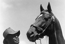 Man o' War / by Blood-Horse