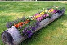Spring has Sprung - Home Ideas / When Spring arrives, it's time to clean up, dust off the winter and brighten up your home