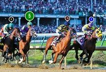 2014 Kentucky Derby / Images from the 2014 Kentucky Derby won by California Chrome / by The Blood-Horse