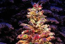 Christmas ⛪️