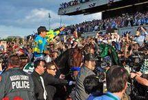2015 Belmont Stakes / 2015 Belmont Stakes
