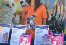 PET PARTY Corciano Quasar Village 2 giugno 2015