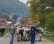 Alsace - Culture et traditions