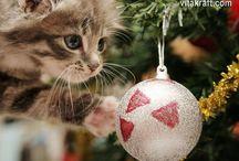 La bacheca del Natale / Animali domestici e da compagnia versione natalizia!  www.vitakraft.it