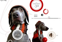 web fabs & apps / inspiration & ideas for websters