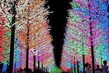 x.mas lights