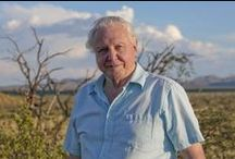 sir daivd Attenborough