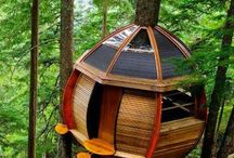 Wanna live in a TREE HOUSE!