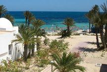 Túnez / Nuestras experiencias y las encontradas en esta red, de caracter inspirador