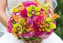 Wedding Bouquet Ideas / Wedding Bouquet Ideas for the Bride or Bridesmaids.
