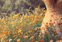 Wild silence..wild beauty