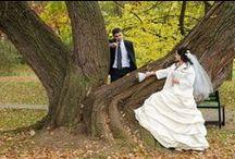 Fall Weddings / Fall Weddings. Fall Wedding Ideas. Fall Wedding Ring Holders. Fall Wedding Themes. Fall Wedding Supplies. Fall Wedding Centerpieces. Fall Wedding Pumpkin.