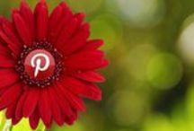 SEO & Social Media for Web Writers