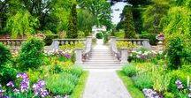 GARDEN (κήπος)