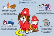 Pet Safety Infographics / Check out these safety tips.