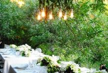 Wedding & Events  / by Tiffany Carter