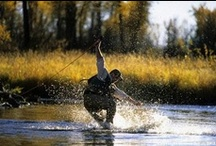 Fly Fishing / Fly fishing advice and fly tying patterns.