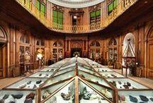 Kunst & Cultuur - Art & Culture / Voor hoge resolutie beelden mail ons info@haarlemmarketing.