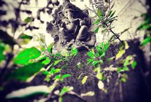 PhotoGraphy by Inderbariya / Just showing vision, taking random picture