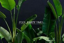|[Pool Party]| / Throw a Pool Party with Bavna's favorite ideas.