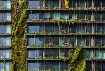 Plantas / Jardins verticais, arquitetura sustentavel, sustainable architecture, green wall, parede verde