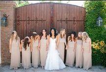 Bridesmaids, Flower Girl & Ring Bearers