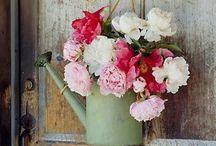 flower arrange / bouquet
