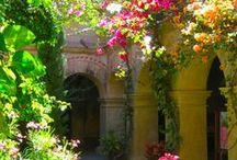 Gardens, Patios Etc
