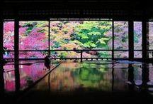 和室&日本庭園 / Japanese traditional house interior Washitsu & garden