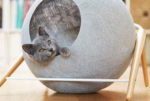 Pets interior | Интерьер для животных