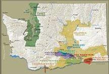 Washington / Various places around Washington.