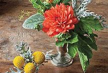 Fall Flowers and Arrangements / Fall
