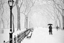 ZIMA (winter)